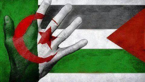 الجزائر بين ثنائية قدسية القضية الفلسطينية والرفض المطلق للتطبيع مع إسرائيل