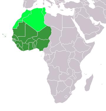 تحولات الموقف الإفريقية تجاه القضية الفلسطينية (2010-2020) دول غرب أفريقيا نموذجاً